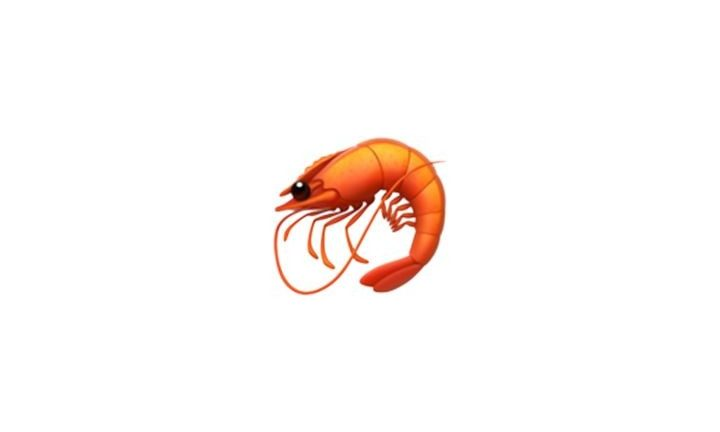 2-the-prawn-40499-3