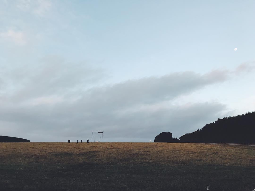 BTV Field
