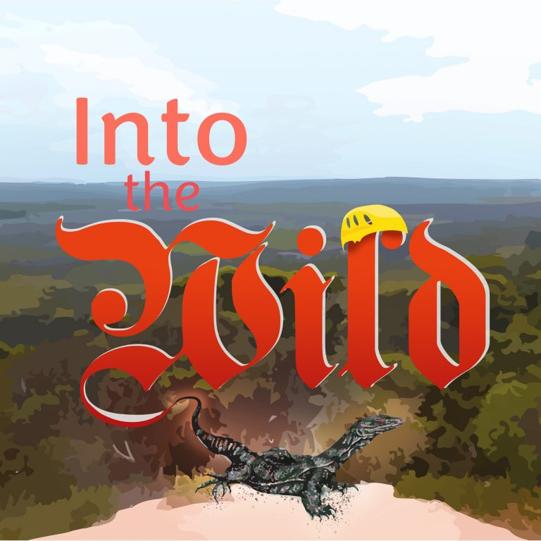 IntoTheWild_Logo