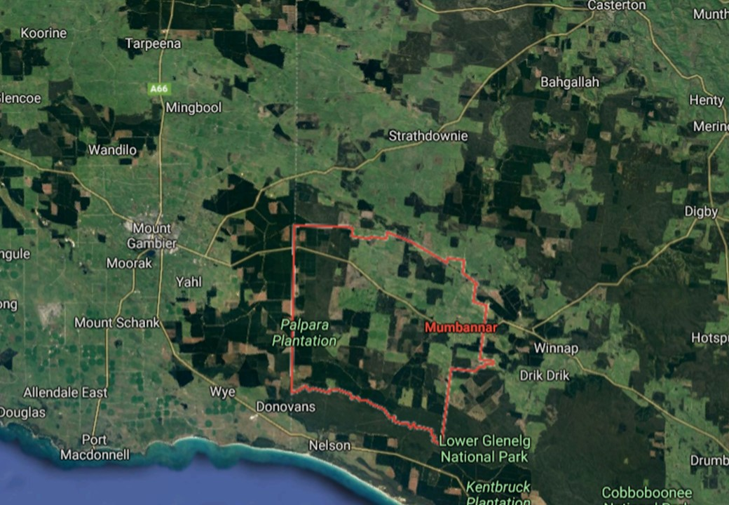 The collision occurred on the Princes Highway in Mumbannar near the Vic-SA border, Credit: Google Maps.
