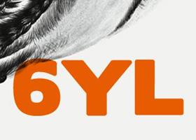 SYL-f.jpg