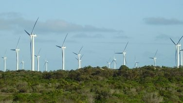 Wattle_point_windfarm_south_australia