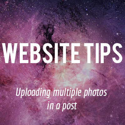 Website20Tips20-20Multiple20Photos.png