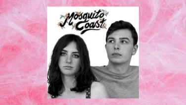 fairy floss background with mosquito coast's album art