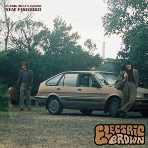 cousin_tonys_brand_new_firebird_electric_brown_0318