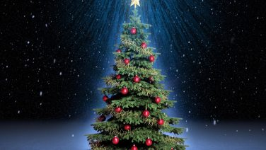 general-christmas-tree-wallpapers-and-backgrounds-w8themes-superb-christmas-tree-wallpapers-background.jpg
