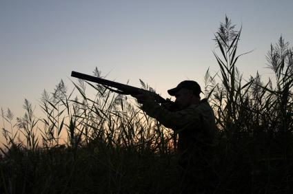 hunter-1.jpg