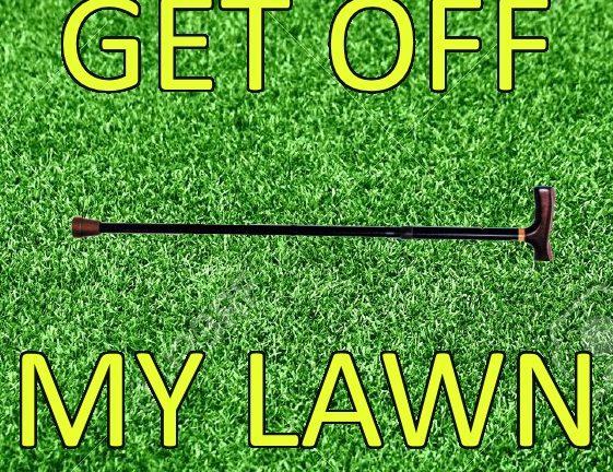 lawn_0-1.jpg