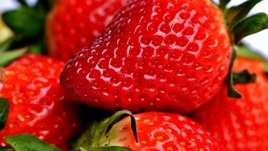 strawberry-2290969_960_720