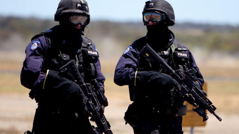 terrorist20guns.jpg