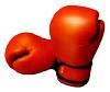 Icon-boxing-gloves.jpg