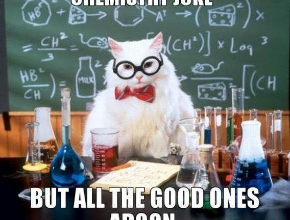 science-cat-meme_0.jpg